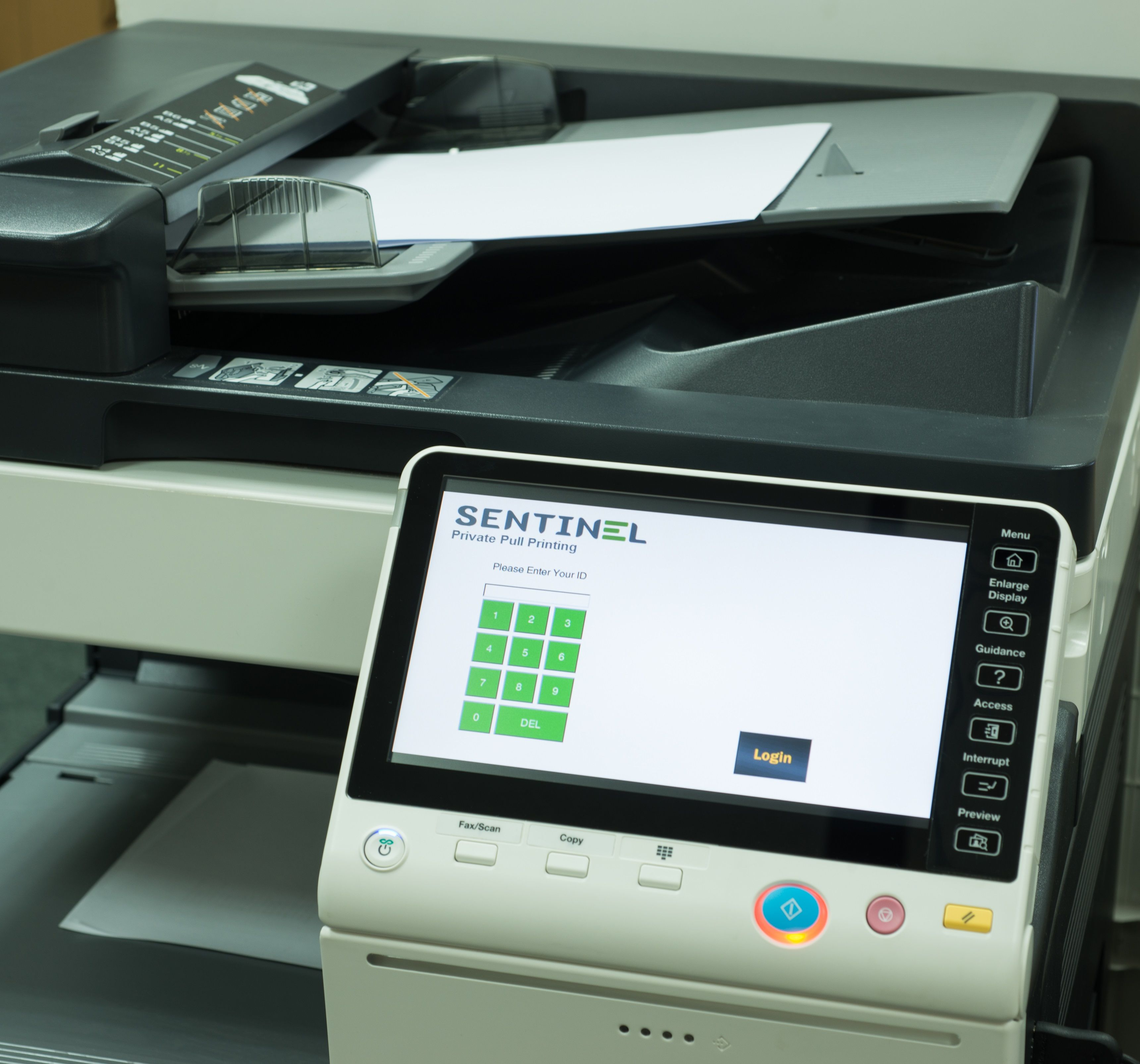 Embedded printing software